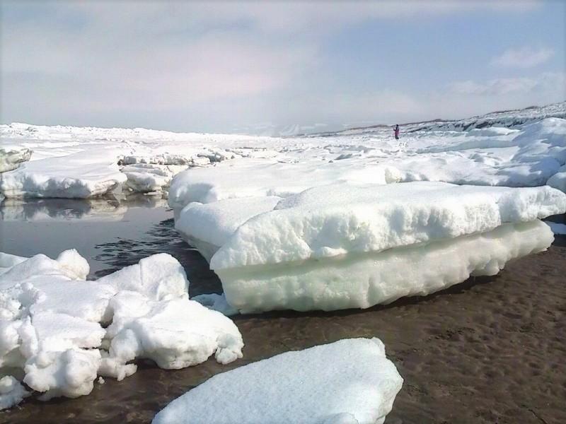 流氷に接近