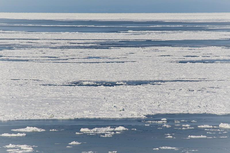 海面と流氷